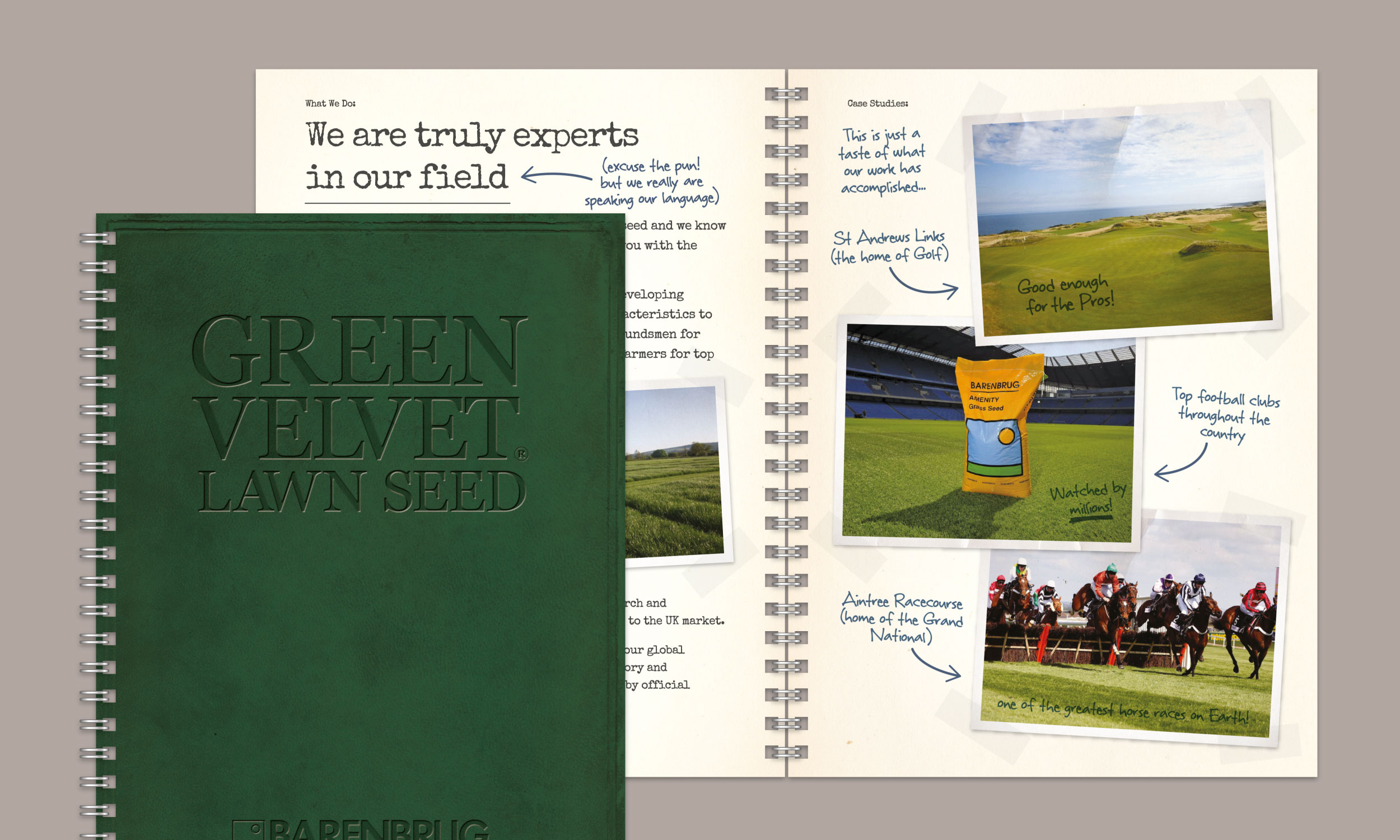 Green Velvet Lawn Seed brochure design